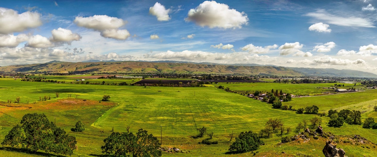 Wide view of a Coyote Valley with bright green fields and Diablo Range in the distance under a blue sky with white fluffy clouds