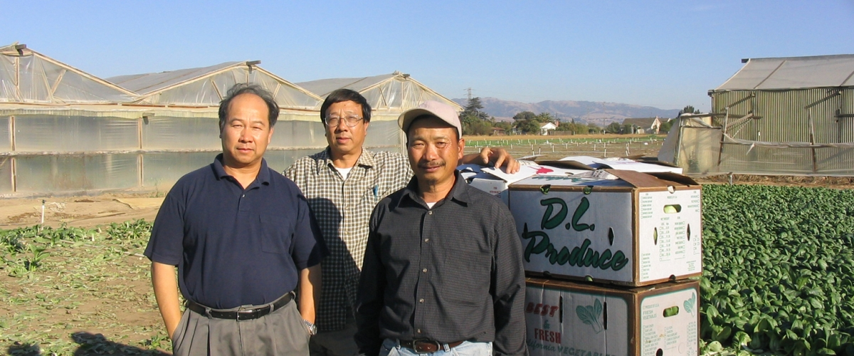 Three men standing in agricultural field facing camera next to produce boxes and greenhouses behind them