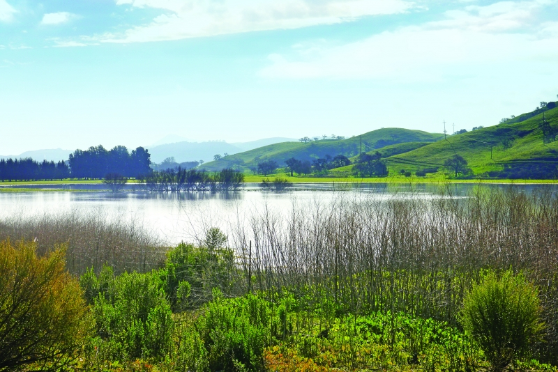 Coyote Valley Water Resource Investment Strategy