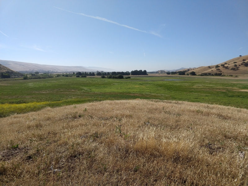 North Coyote Valley Management Plan