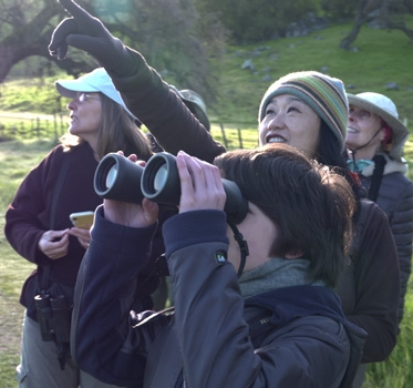 Group of birdwatchers looking through binoculars and pointing towards sky