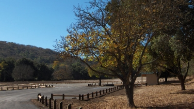 Trees and brown grass next to parking lot with hillsides in background