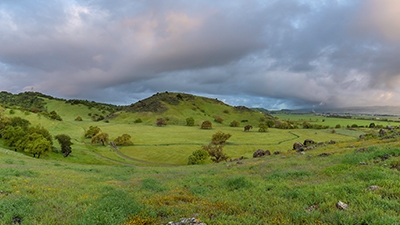 Lush green fields and hills of Coyote Valley under an overcast sky