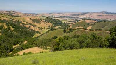 Overlooking the hills of Tilton Ranch to the North towards Coyote Valley