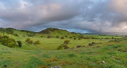 Lush green grassy field looking across Coyote Valley to rolling green hills under overcast sky