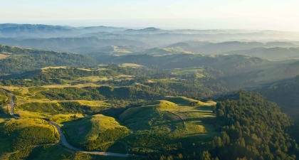 Green Santa Cruz Mountains bathed in golden light extended into the distance