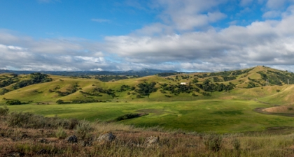 Looking across the green low basin of North Coyote Valley Conservation Area surrounded by green hill under a blue sky with white clouds
