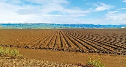 Pajaro River Agricultural Preserve