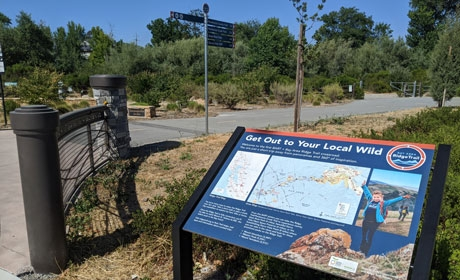 Blue interpretive panel with title Get Out to Your Local Wild next to paved trail