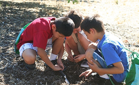 Three students crouching on group digging a small hole