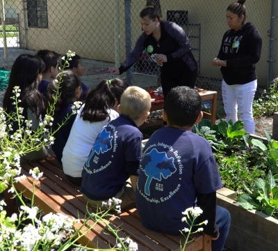 Students on bench in garden facing instructors