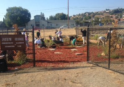 Students working in garden surrounded by black fennce