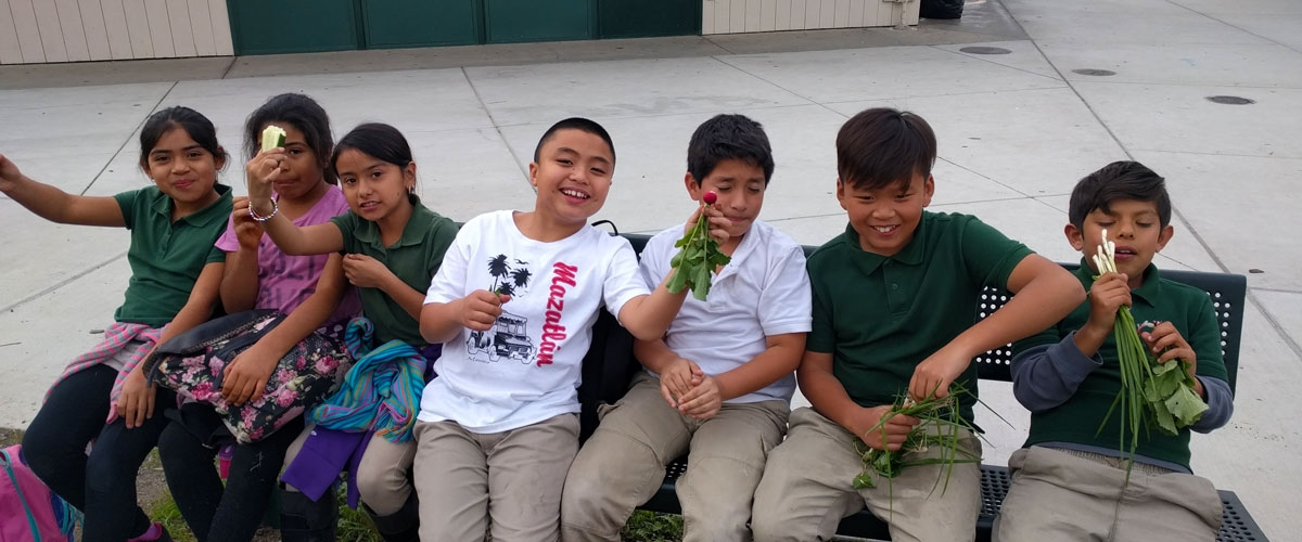 Seven students sitting on bench smiling and holding up plants to the camera