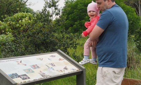 Man holding smiling baby and looking at an interpretive panel about hummingbirds and butterflies at Ulistac Natural Area