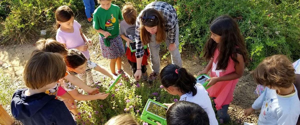 Students in garden