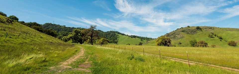Heart's Delight Trail at Coyote Valley Open Space Preserve leading through green field