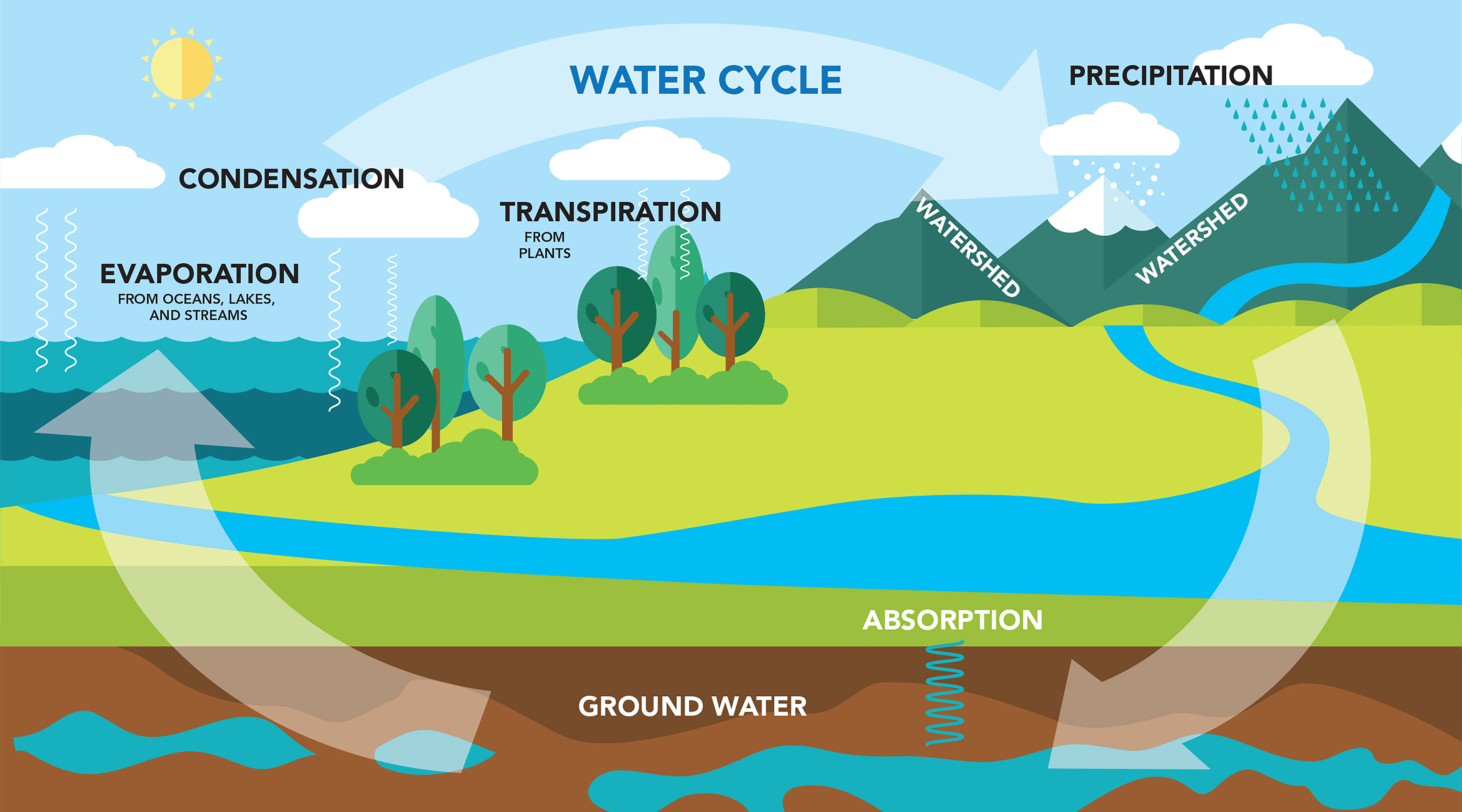 Check out how the water cycle works.
