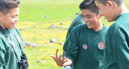 Three adolescents students in green sweatshirts looking at butterfly and smiling