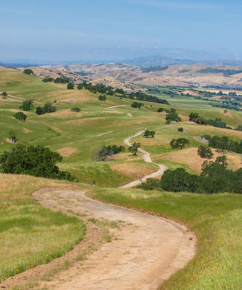 Dirt road leading through green hills at Tilton Ranch property