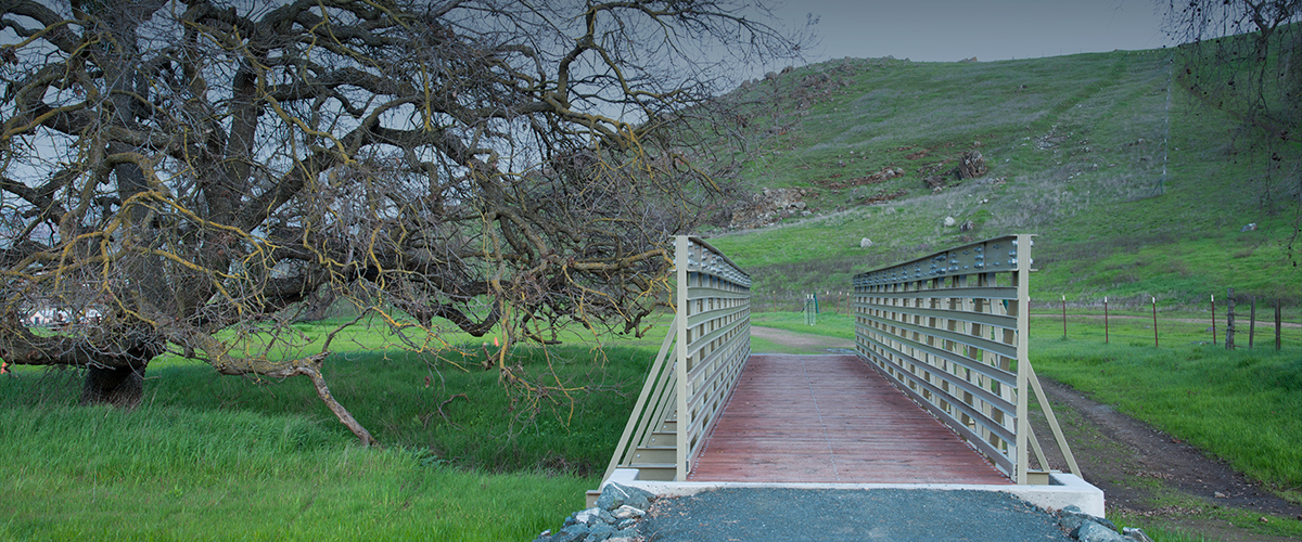 Pedestrian bridge at Coyote Valley Open Space Preserve next to large tree with green hillside in background