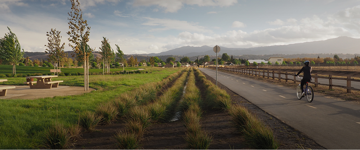 Martial Cottle County Park with grass fields, picnic benches, and paved bike trail with mountains in the distance